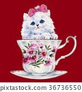 動物 毛孩 貓 36736550