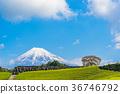 【靜岡縣】富士山和茶園 36746792