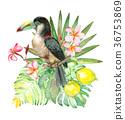 Tropical watercolor bouquet 36753869