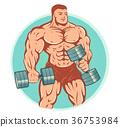 bodybuilder, gym, vector 36753984