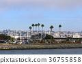 california, san diego, cityscape 36755858