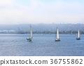 bay, ocean, sea 36755862