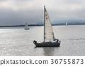 bay, ocean, sea 36755873