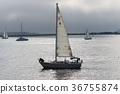bay, ocean, sea 36755874