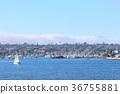 california, san diego, cityscape 36755881