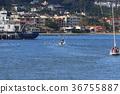 san diego, boat, boating 36755887