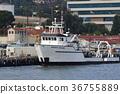 bay, harbour, port 36755889