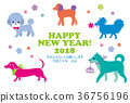 new year's card, year of the dog, dog 36756196