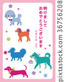 new year's card, year of the dog, dog 36756208