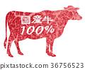 牛肉 奶牛 牲口 36756523