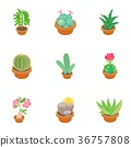 plant, icons, vector 36757808