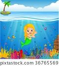 Cartoon mermaid underwater 36765569