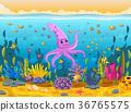 cute squid under the sea 36765575