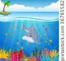 水生的 卡通 珊瑚 36765582