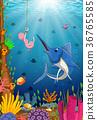 swordfish considers taking the bait worm smile 36765585