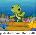 Cartoon turtle underwater 36765586