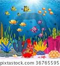 水生的 珊瑚 鱼 36765595