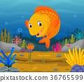 水生的 卡通 珊瑚 36765599