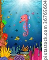 Tropical sea horse with beautiful underwater 36765604