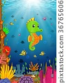 Tropical sea horse with beautiful underwater 36765606