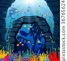 Underwater scene with tropical coral reef 36765624