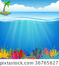 Underwater scene with tropical coral reef 36765627
