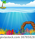 Underwater scene with tropical coral reef 36765628