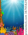 Underwater scene with tropical coral reef 36765629