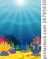 Underwater scene with tropical coral reef 36765630