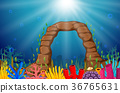 水生的 珊瑚 鱼 36765631