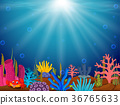 Underwater scene with tropical coral reef 36765633