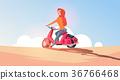 bike, vehicle, ride 36766468