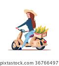 bike, vehicle, ride 36766497