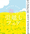 Rape field Spring moving poster 36769214