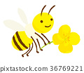 bee,honeybee,character 36769221