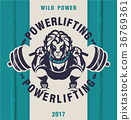 Powerlifting,barbell,squat 36769361