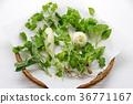 事件 活动 蔬菜 36771167