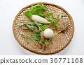 事件 活動 蔬菜 36771168