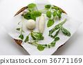 事件 活动 蔬菜 36771169