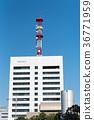 청사, 건물, 빌딩 36771959