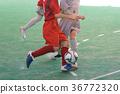 futsal, indoor, indoors 36772320