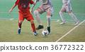 futsal, indoor, indoors 36772322