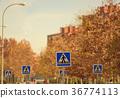 Crosswalk signs in urban area 36774113
