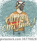 猫 猫咪 圣诞快乐 36776828