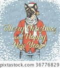 猫 猫咪 圣诞快乐 36776829