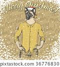 猫 猫咪 圣诞快乐 36776830