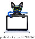 scuba diving dog 36781062