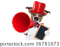 dog, megaphone, sale 36781073