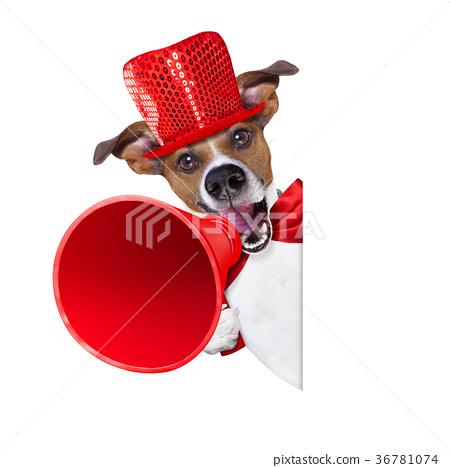 dog sale megaphone 36781074