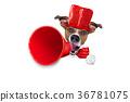 dog, megaphone, sale 36781075